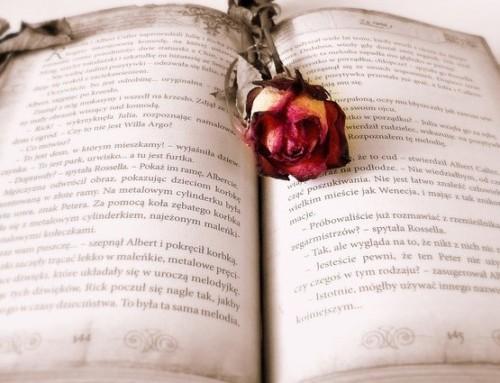 Bücher-Börse: kostenloses Angebot für Senioren