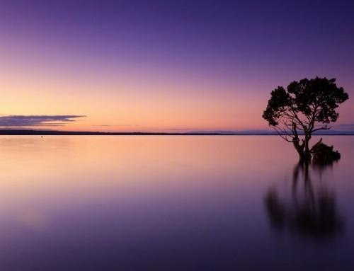 Meditationsimpuls Mai
