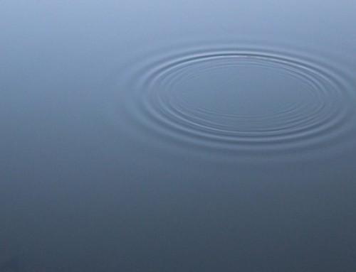 Meditationsimpuls August